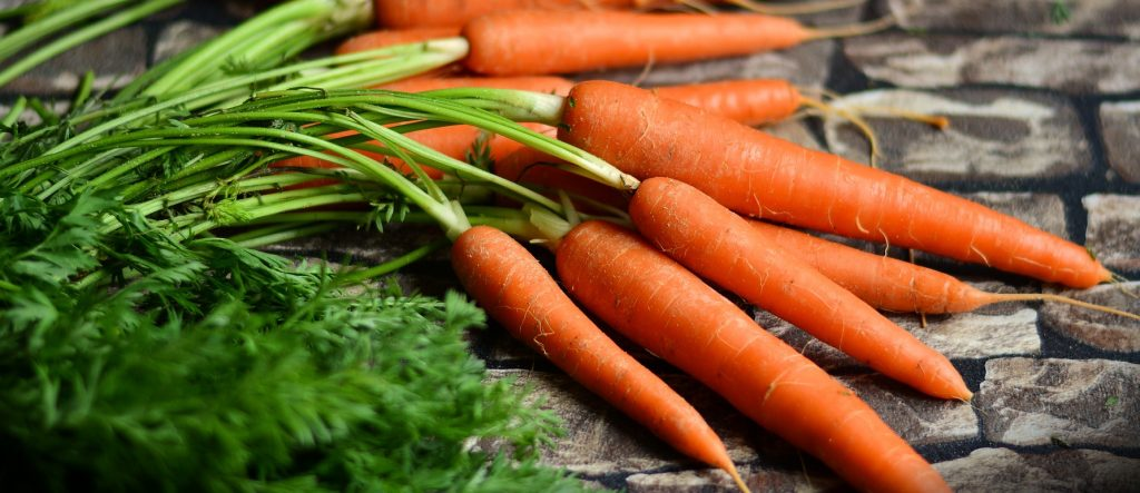 Wholesale Dehydrated Carrots in Bulk Packaging